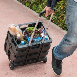 Chariot Pliable Multi-usages