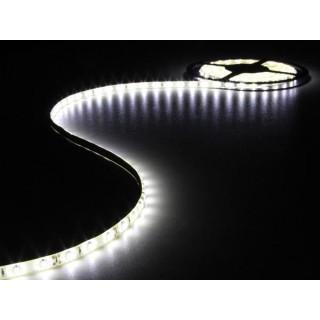 FLEXIBLE À LED - BLANC FROID - 300 LEDs - 5 m - 12 V