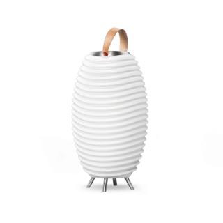 Kooduu Synergy 50S - Lampe LED, Enceinte Bluetooth, Pot de Fleur, glacière