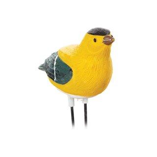 Hygromètre Pour Plantes - L'Oiseau Chante Dès Que La Plante A Besoin D'Eau - Pinson